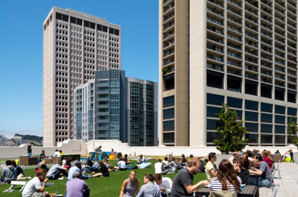 taman, taman atap, kantor, ruang kantor, twitter, kantor twitter