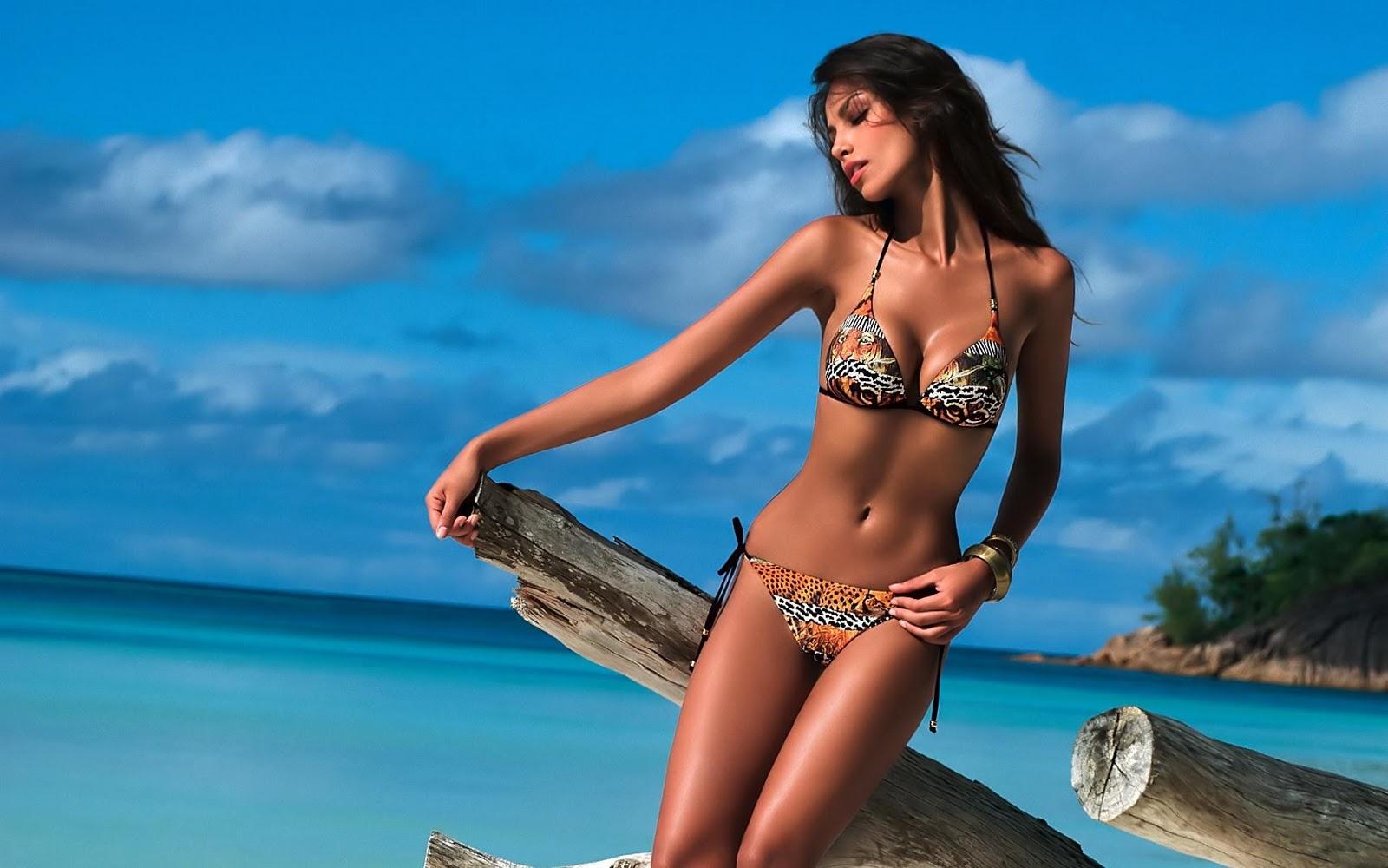Hot Bikini Babes HD Wallpapers Hot Photos Hub