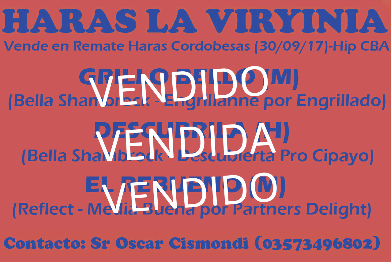 HS LA VIRYINIA 2