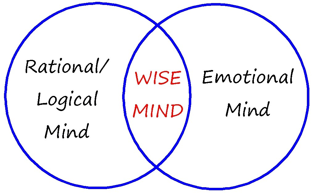 The Wise Mind Preview #DBT #statesofmind | In Session | Pinterest ...