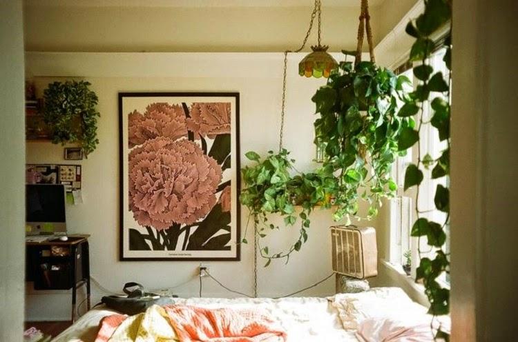 If. GYPSY YAYA  Plants In The Bedroom