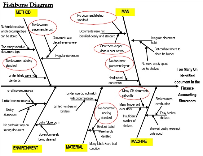 Toyota Accelerator Crisis Fishbone Diagram And Flowchart Coursework