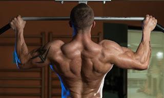 تمرين تضخيم عضلة الظهر