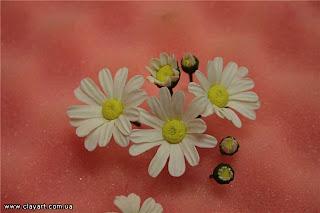 Цветы 8