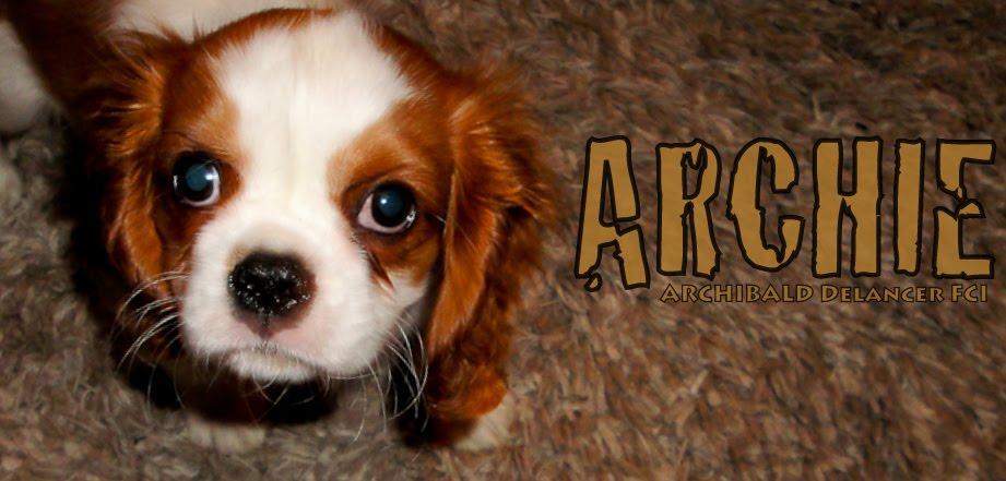 Świat Według Archie'go