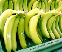 aumenta exportacion de bananos