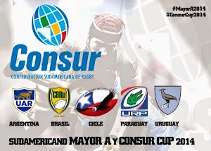 Nuevo formato para el Sudamericano de Rugby