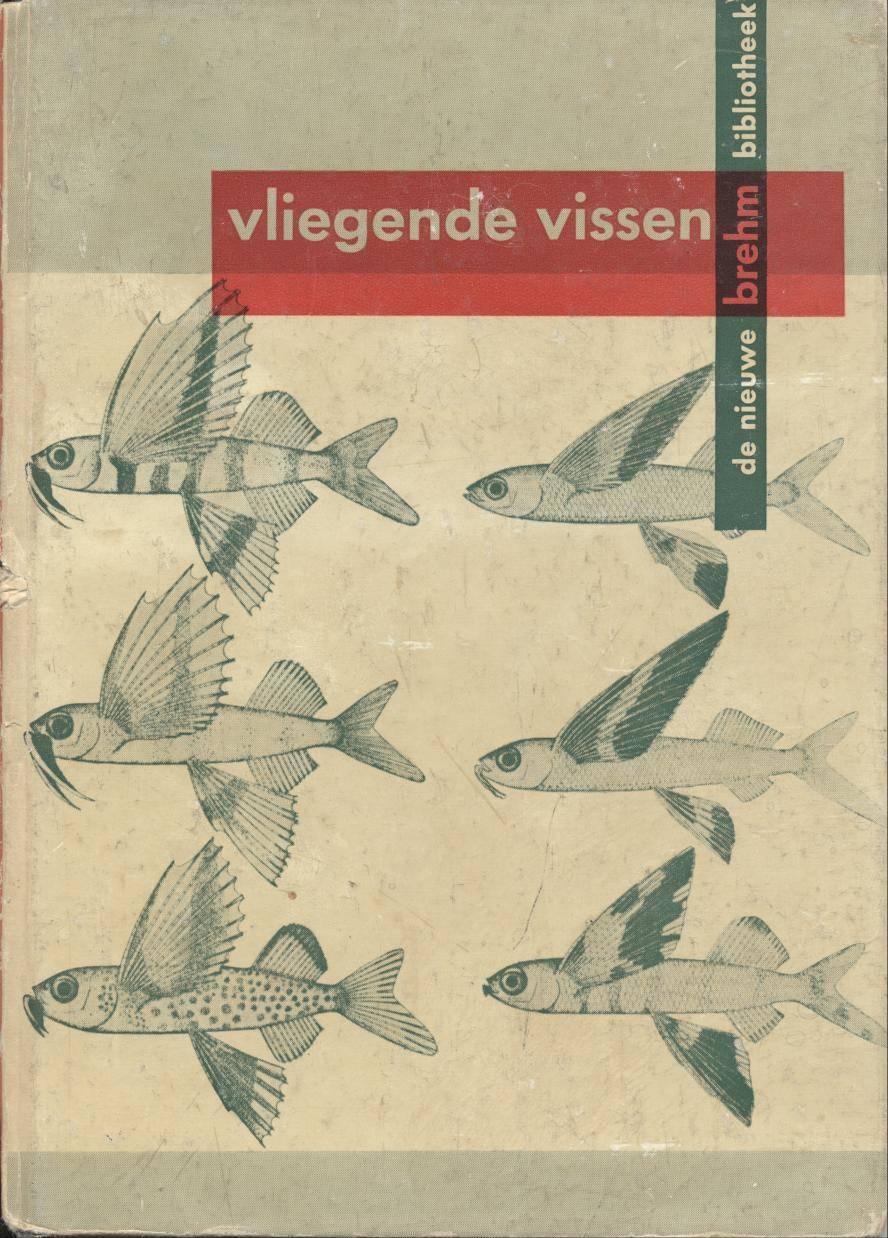 vliegende vissen by erna mohr ca 1960