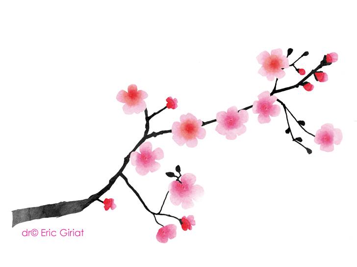 Eric giriat blog book lonely planet - Branche de cerisier japonais ...