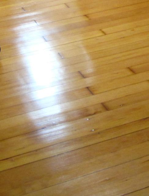 Prepping and varnishing refinishing hardwood floors for Hardwood floors too shiny