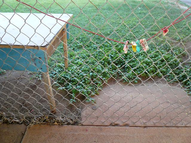 © 2008 Amber Schley Iragui, Kainalu Elementary School in Kailua, Hawaii