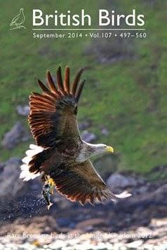 RARE BREEDING BIRDS IN THE UK IN 2012