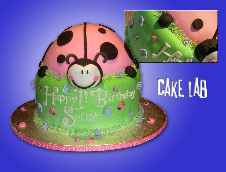 Zaco Cakes Pink Ladybug 1st Birthday Cake