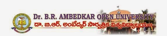 Ambedkar Open University M.Ed June 2014 Result