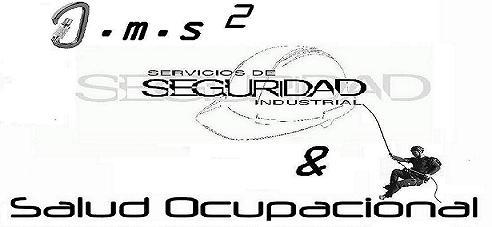 AMS SEGURIDAD INDUSTRIAL Y SALUD OCUPACIONAL