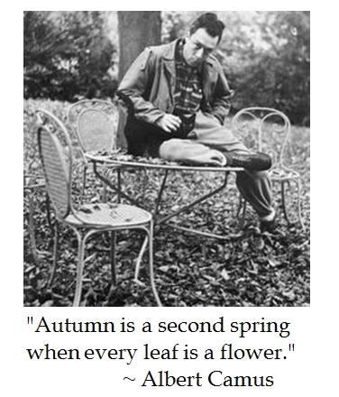 """"""" το φθινόπωρο είναι μια δεύτερη άνοιξη όταν κάθε φύλλο είναι ένα λουλούδι."""""""