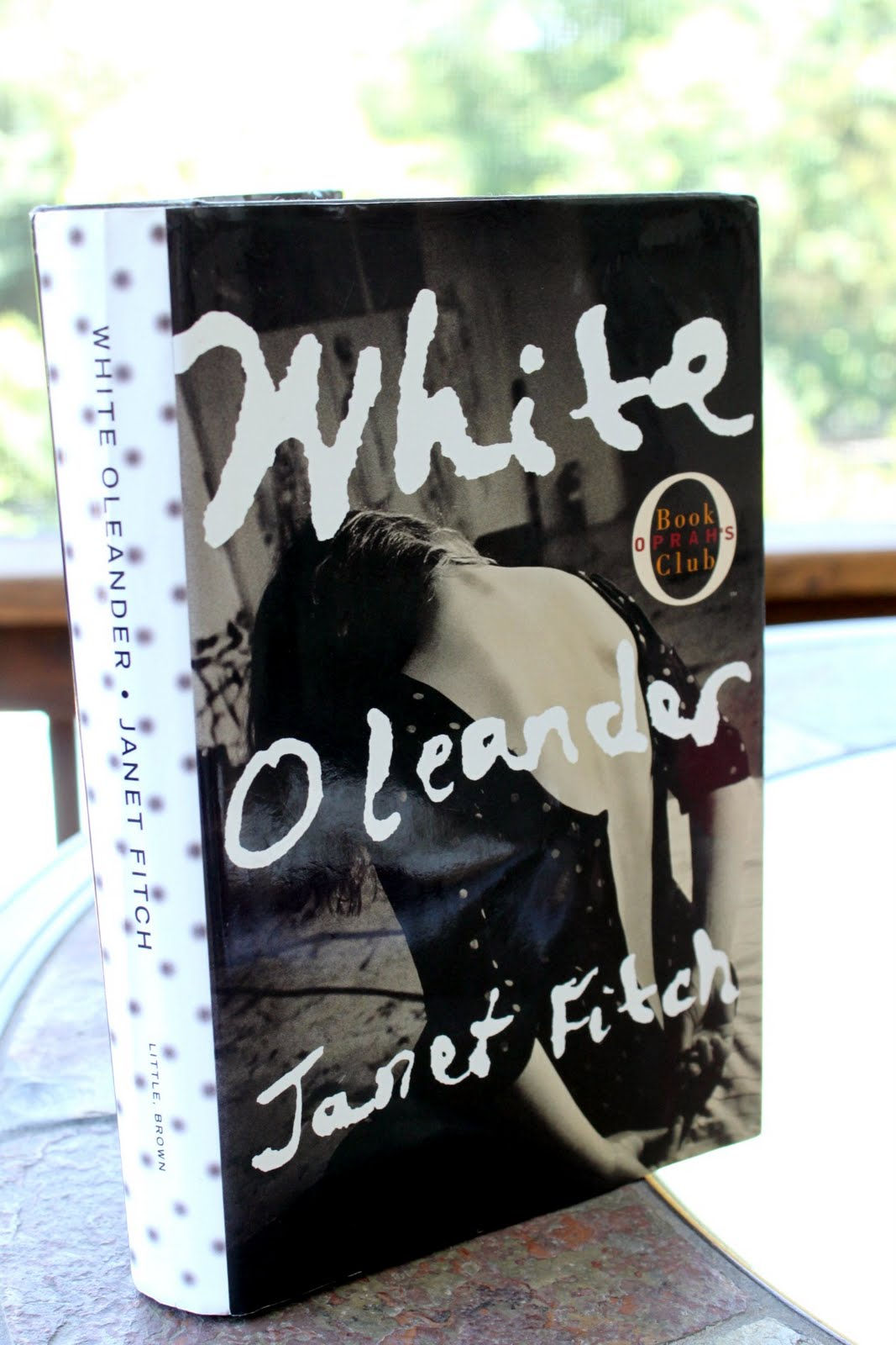 White oleander essay questions