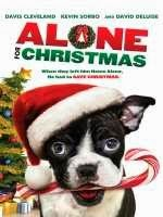 ver peliculas online en hd sin corte en audio latino Alone For Christmas (2013)