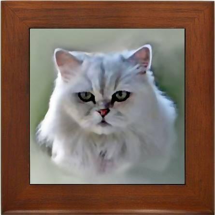 digital cat portraits