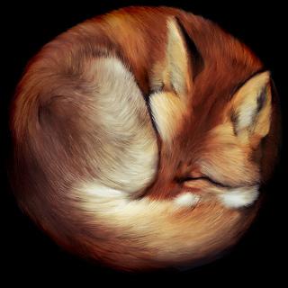 眠るfirefox