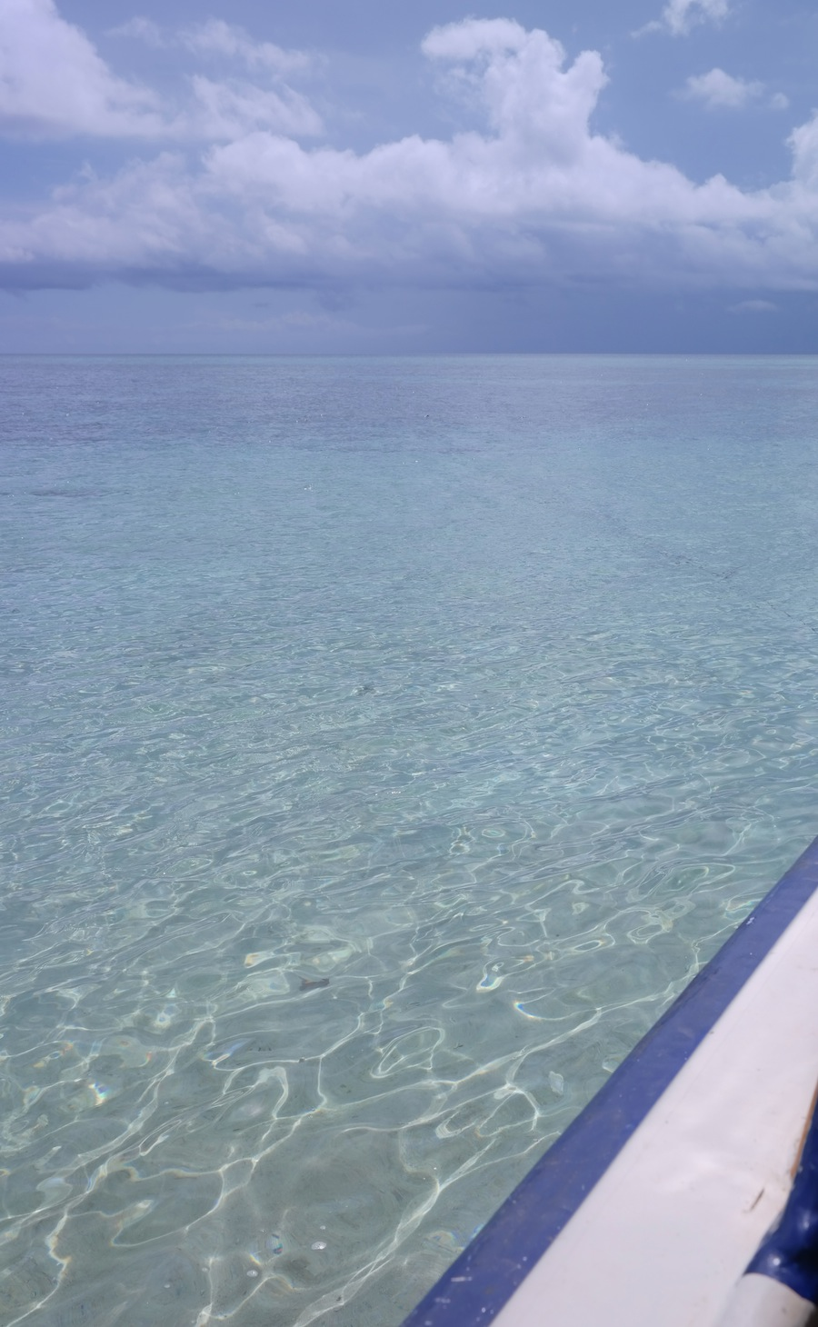 "<a href=""http://mataram.info/things-to-do-in-bali/visitindonesia-banda-marine-life-the-paradise-of-diving-topographic-point-inward-fundamental-maluku/"">Indonesia</a>best destinations : Melihat Penyu Bertelur Di Pulau Sangalaki"