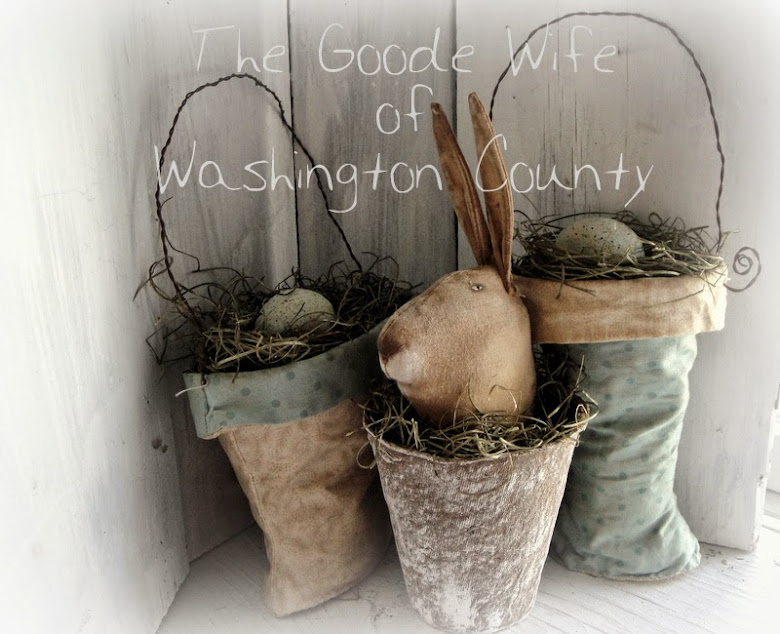 The Goode Wife of Washington County