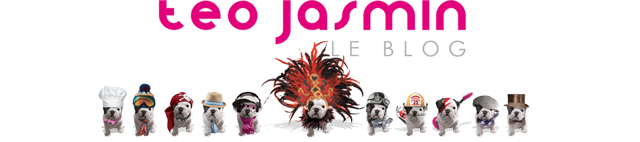 Le Blog de Teo Jasmin