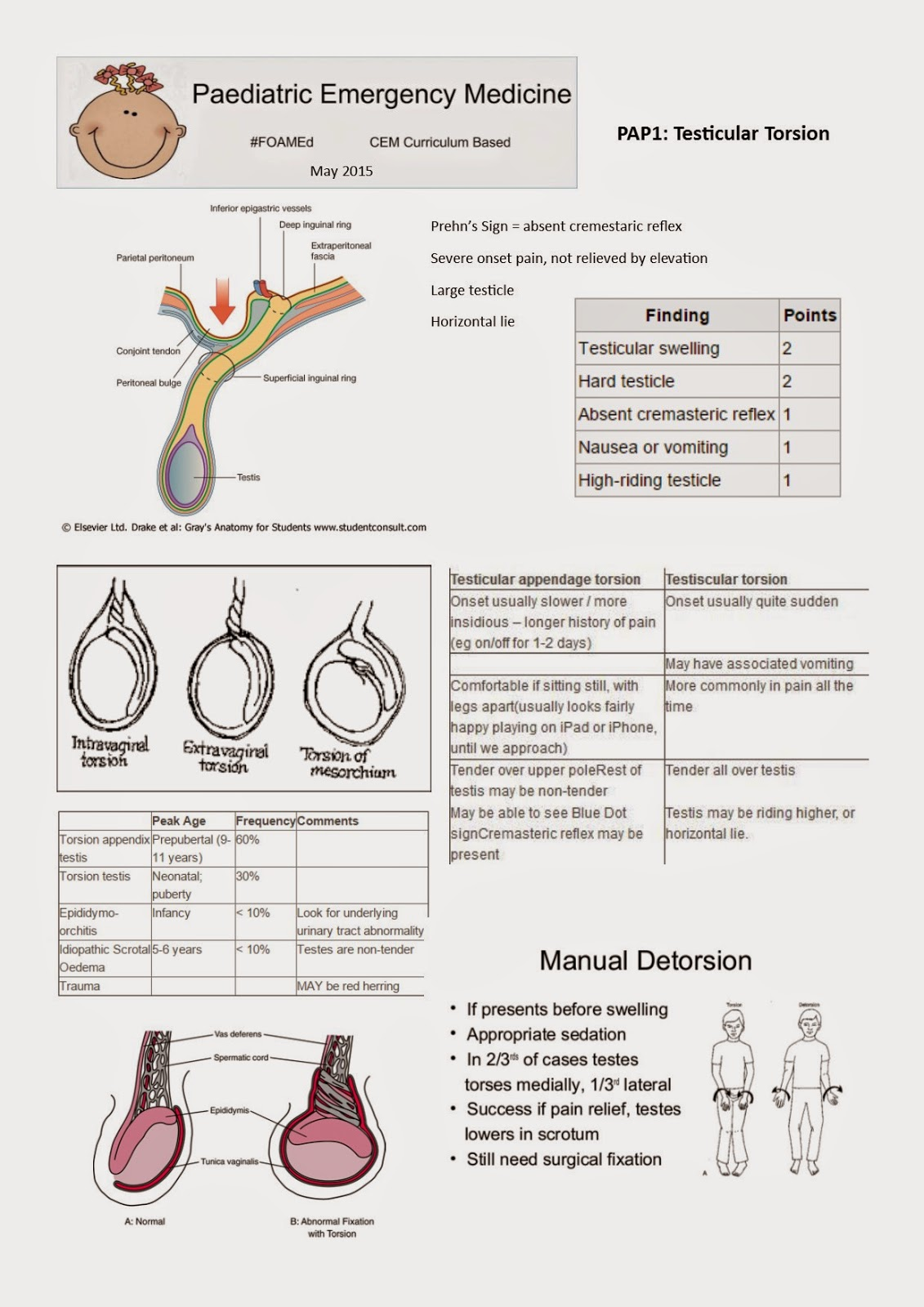 Penis And Scrotum Manual Guide