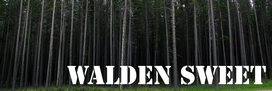 Walden Sweet