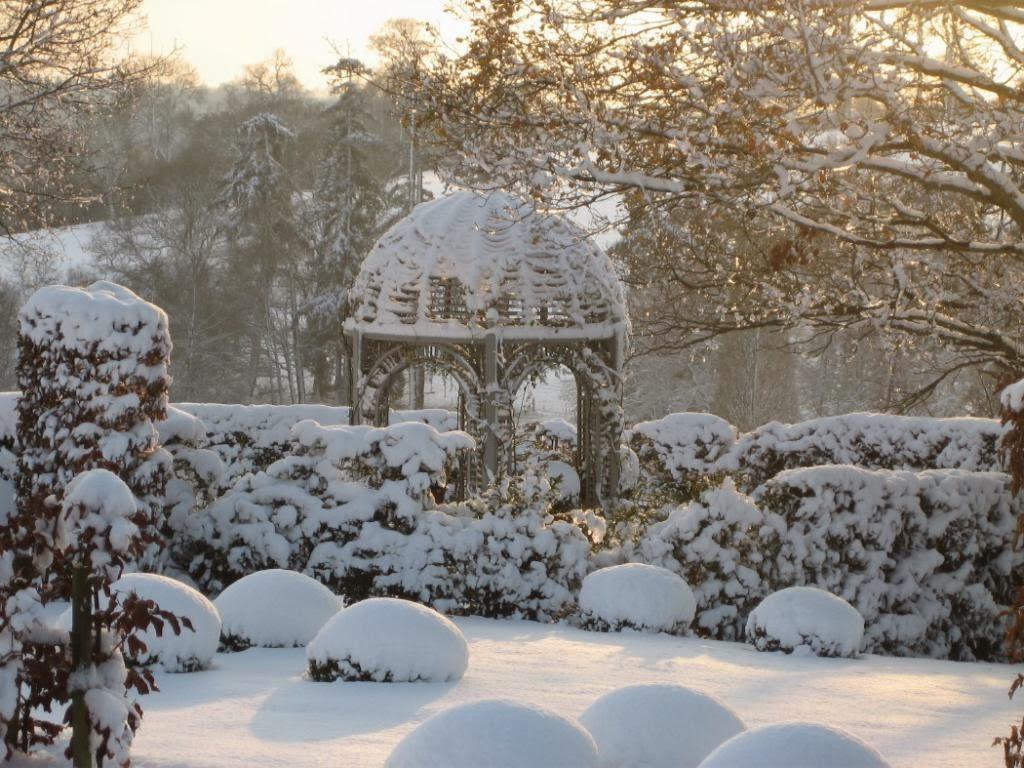 carrie u0027s design musings the winter garden