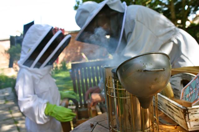 beekeepers bees
