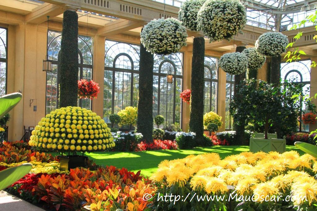 fotos jardins lindos : fotos jardins lindos:Palavras-chave: jardins; plantas;flores;passeio; decoração externa