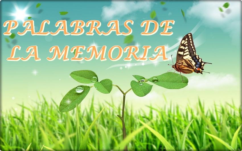 PALABRAS DE LA MEMORIA