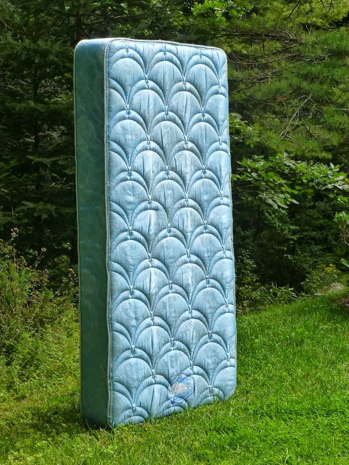 free matress photo, twin blue mattress propped up, vertival standing mattress on green grass, beautiful matress in nature