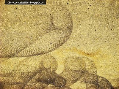 L'âge de sable 1