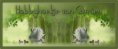 http://hobbyhoek-van-catrien.jouwweb.nl/