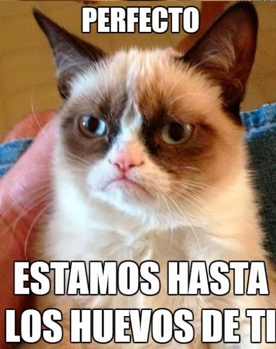 Grumpy Cat - Perfecto, estamos hasta los huevos de ti,