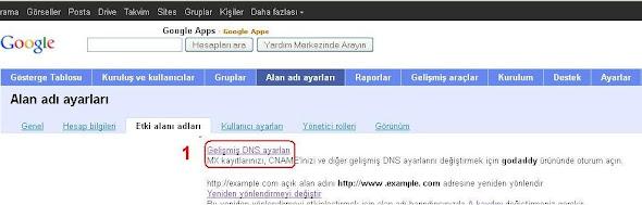 Blogger Etki alanı ayarları, gelişmiş DNS ayarları