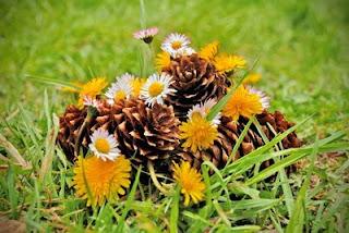 flori belis