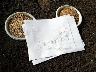 """Il ciclo del grano: dal """"pezzo di carta"""" alla realtà"""