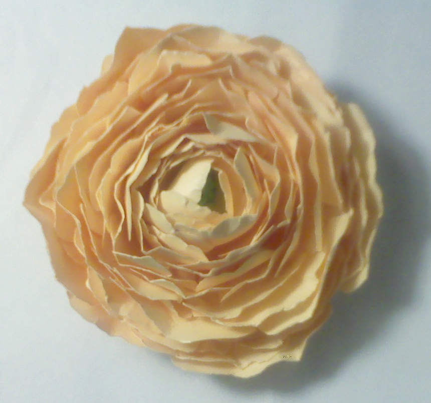 Omg my diy wedding paper ranunculus flower mightylinksfo