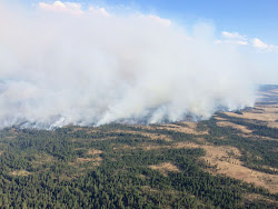 Corner Creek Fire
