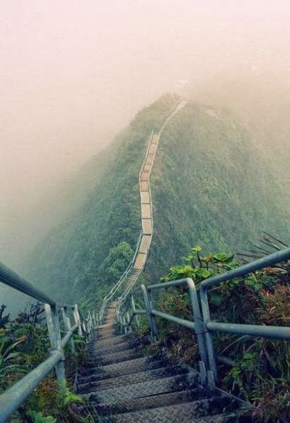 stairs in the island of Oahu, Hawaii