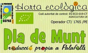 Horta Ecològica Pla de Munt