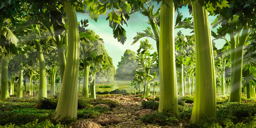 Celery Forest