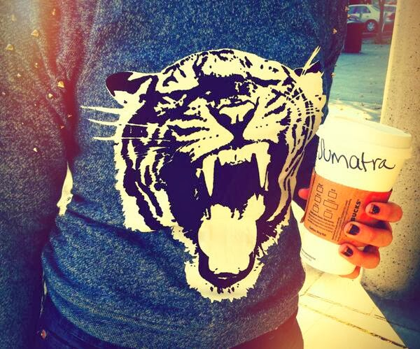 Express studded Tiger Sweatshirt grey black