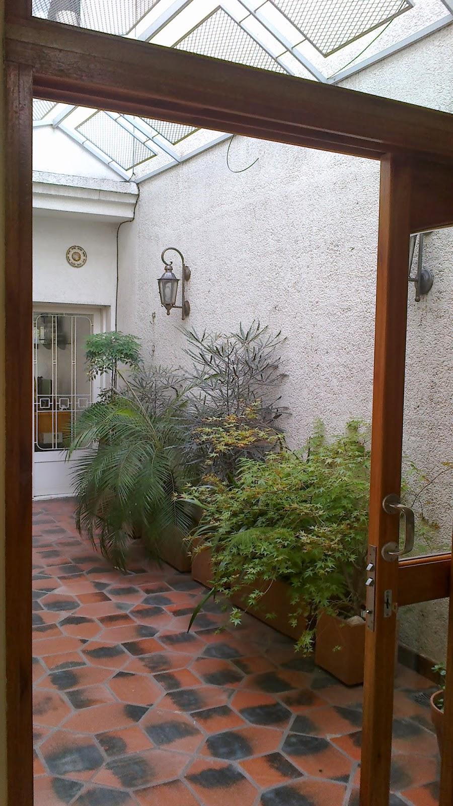 Reverdir jardineria y paisajismo plantas de interior for Plantas para patio interior