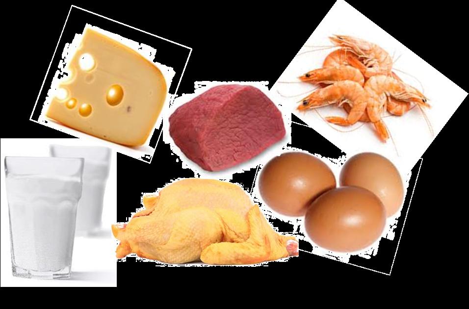 waar zit vitamine b12 in voeding