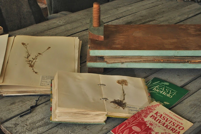 60-luvun kasvistot ja kasviprässi - Muonamiehen mökki