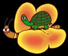 Le farfalle si sono messe in testa di far volare le tartarughe
